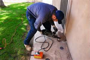 commercial pest control rancho cucamonga
